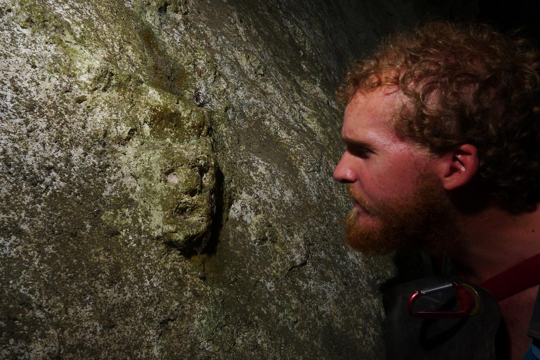 4)Arqueólogo Greg Schwab mirando una cara grabada en una cueva de la región de Nueve Cerros.  Foto tomada por Matt Oliphant.