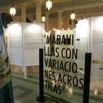 EXPOSICION DE ARTE MIRO_8739