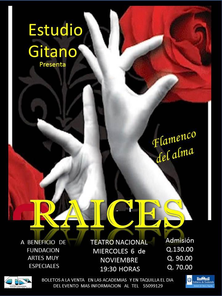Show_Raices_Publicidad_photo