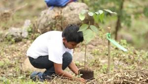 Estudiante siembra un árbol de hormigo en el Bosque Sonoro, Mazatenango.