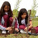 Inician proyecto de jardinización en el parque Erick Barrondo