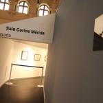 Museo Nacional de Arte Moderno (173)