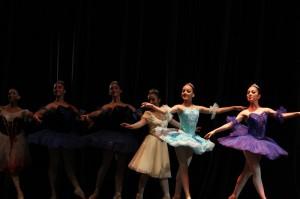 certamen municipal de danza_0251
