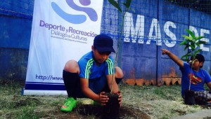 reforestacion roosevelth