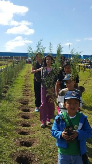 reforestacion centros deportivos WA0021