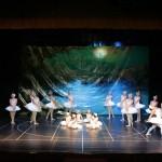 Día Internacional de la Danza_2659