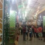 Juego de Pelota Maya en Brasil_4