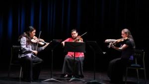 segundo concierto Temporada de Cámara OSN_1583