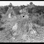 Descubrimiento de Tikal