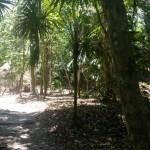 Sitio arqueologico el Pilar