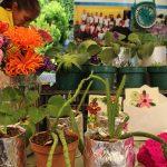 Feria comunitaria cultural de Huehuetenango_4055