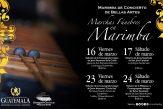 MARCHAS FUNEBRES BELLAS ARTES2
